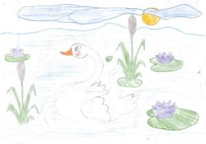 Сен-Санс, Лебедь 4