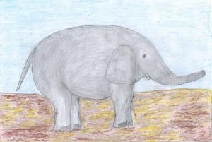 Сен-Санс, Слон 1
