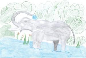 Сен-Санс, Слон 2