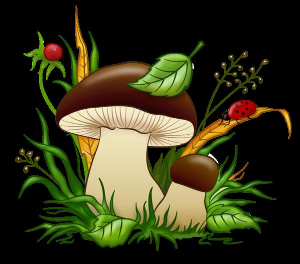 Картинки по запросу белые грибы клипарт